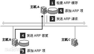 地址解析协议