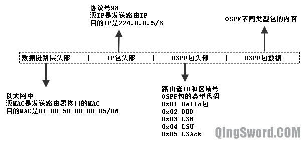 CCNA-OSPF包格式-2.jpg